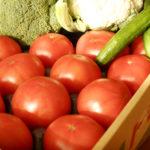 渥美半島から届いた野菜